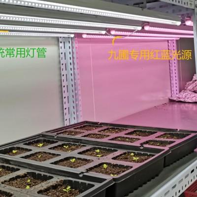LED植物灯-植物组培灯 长120CM