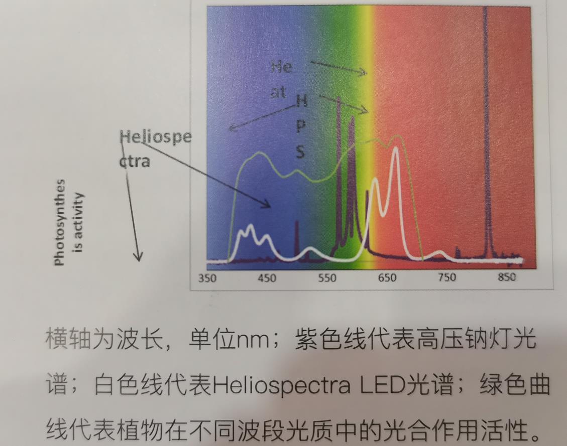 中国科学院植物研究所植物灯(LED补光灯)安装试验完成