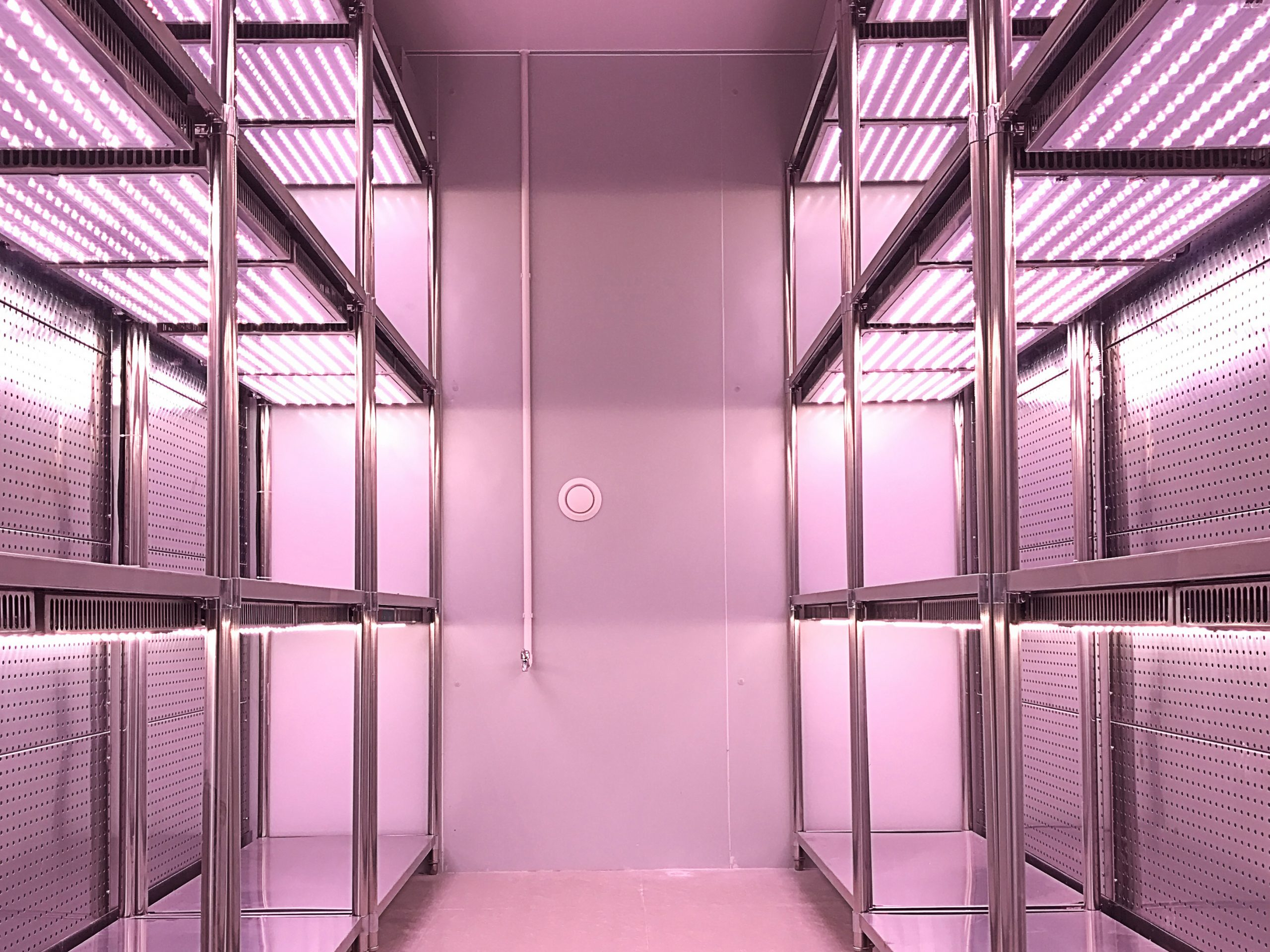 九圃 人工气候室亮相央视-苜蓿培养