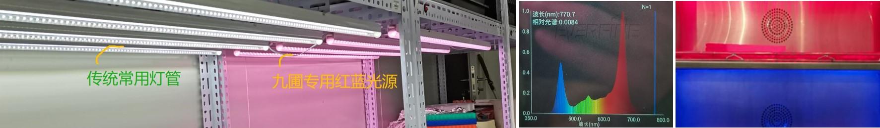 LED植物灯有什么优点