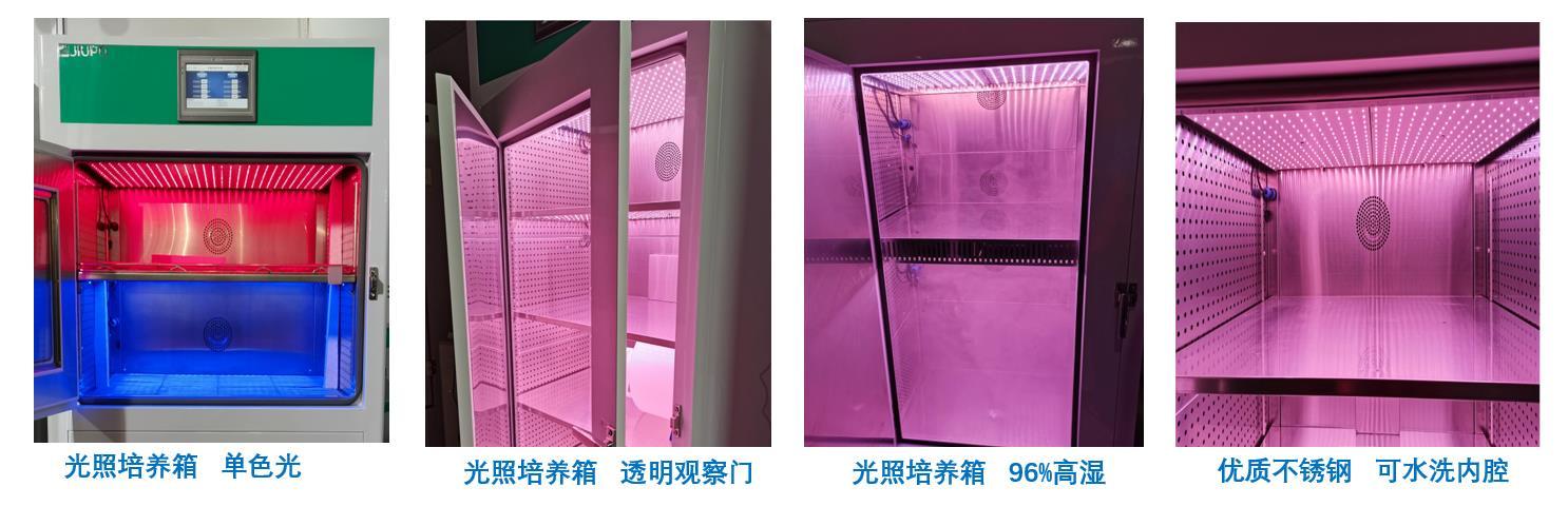 植物人工气候室的作用有哪些