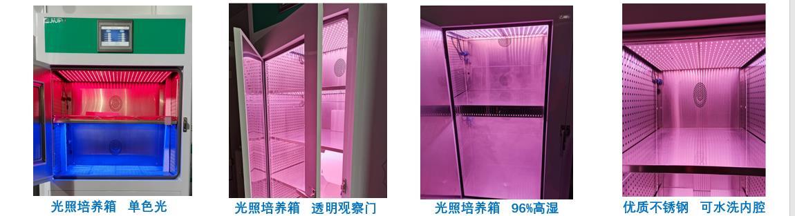 九圃光照培养箱超高湿99%-低温测试